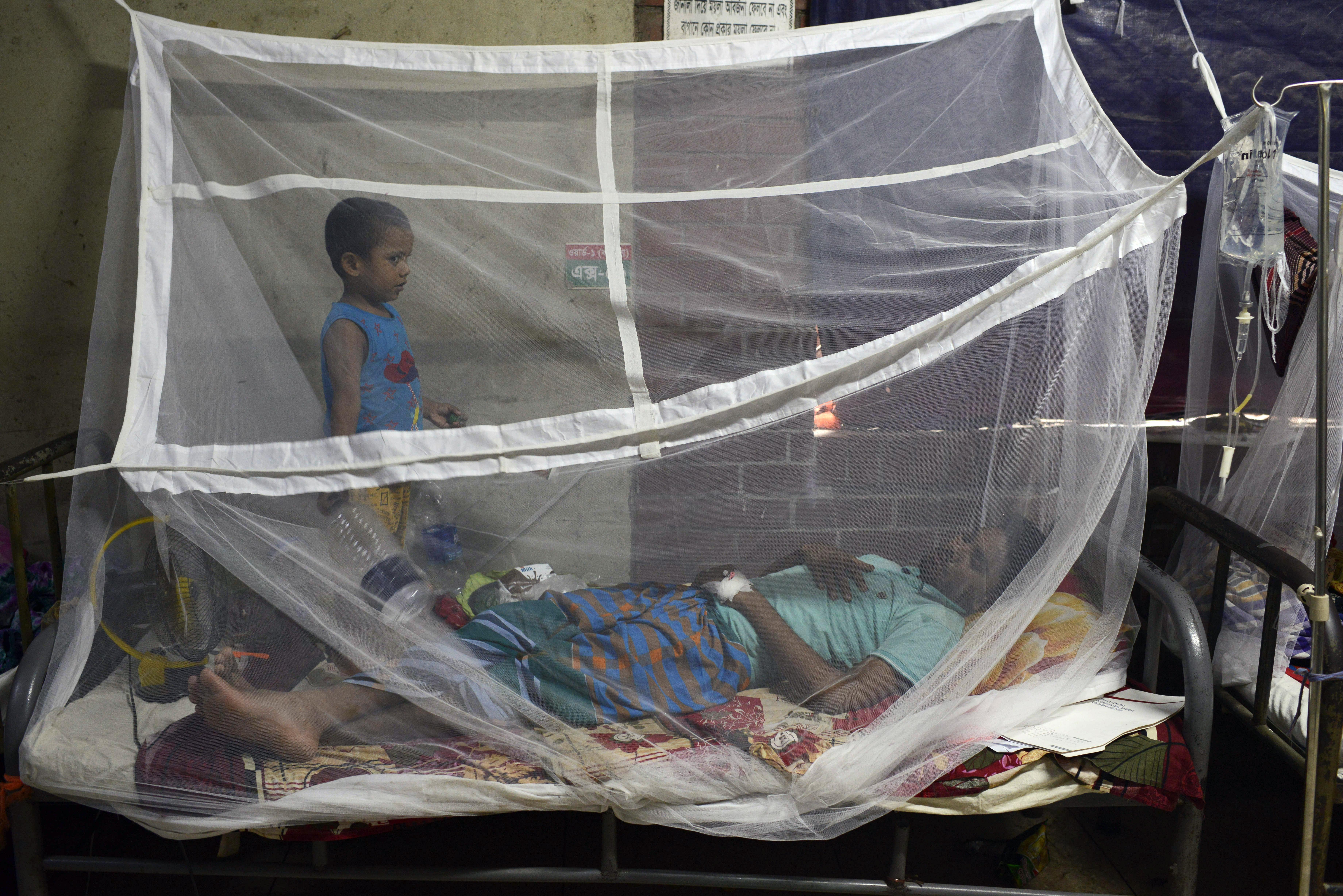 Difficile difendersi dalla dengue