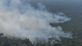 Morales: prendiamoci cura dell'Amazzonia