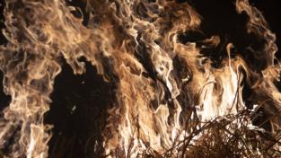Amazzonia in fiamme anche in Bolivia