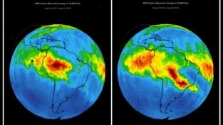 Amazzonia, Siberia e Africa: la nostra responsabilità!
