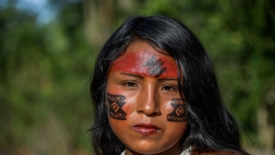 Ucciso il capo indigeno Waiapi