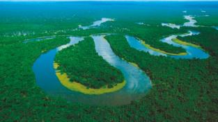 Amazzonia, casa comune