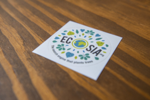 "09 October 2018, Berlin: A flyer of the green search engine ""Ecosia"" is lying on an office desk. Following the temporary stop of deforestation in the Hambach forest, the company, which is committed to environmental protection, has submitted a purchase offer to the energy group RWE. Photo by: Arne Immanuel B'nsch/picture-alliance/dpa/AP Images"