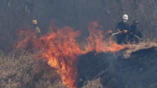Incendi forestali in Bolivia