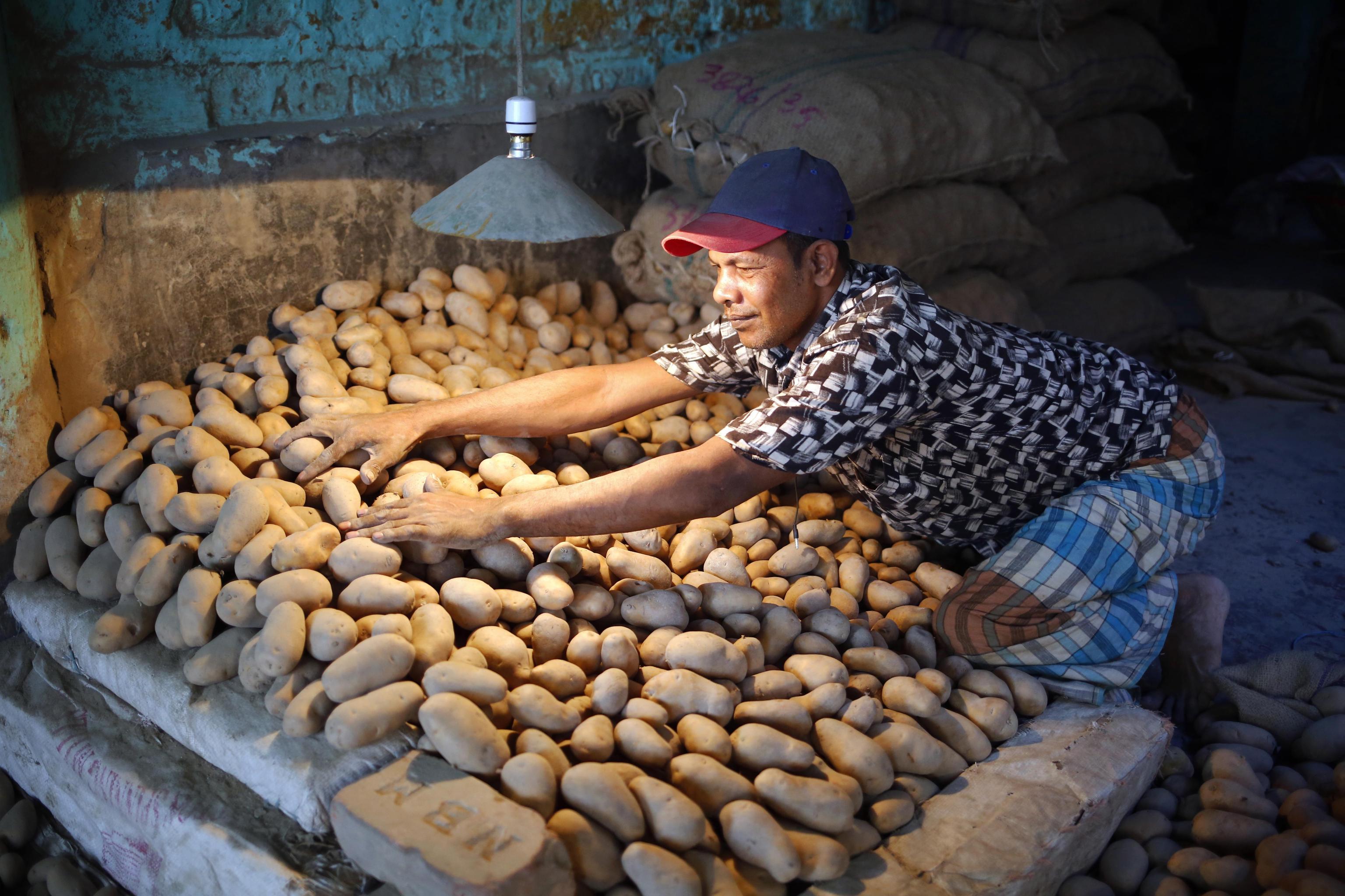 epa07827717 A man works at a vegetal wholesale market in the Shyam Bazar in Dhaka, Bangladesh, 08 September 2019.  EPA/MONIRUL ALAM