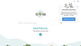 Ecosia: 67 milioni di alberi piantati
