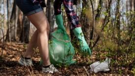 Giovani e adulti ripuliscono giardini