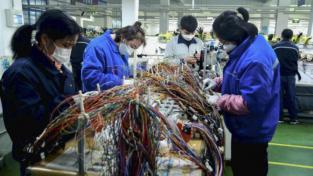 SURE: una rete di protezione per lavoratori e imprese
