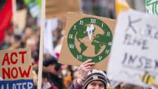 Le radici dell'ambientalismo