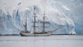 Il coronavirus e gli iceberg