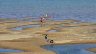 Il fiume Mekong diventa in parte salato, rischio siccità
