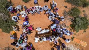 I casi di Covid-19 in Somalia