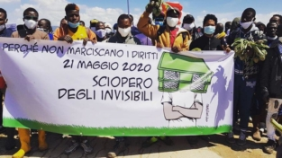 Braccianti in sciopero e boicottaggio delle merci