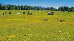 Digitale, zone montane e rurali ancora penalizzate