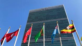 Papa Francesco: «Il mondo ha bisogno dell'Onu»