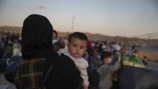 XXIX Rapporto immigrazione 2020: più che dati, raccontiamo le storie