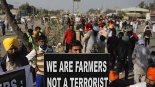 India, la nuova legge per l'agricoltura crea tensioni