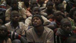 Liberati 334 studenti nigeriani
