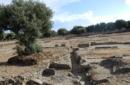 Cassiodoro verso gli altari