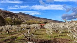 Nuova vita al turismo rurale