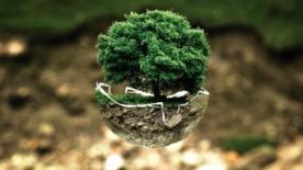 La crisi ambientale non è una questione tecnica