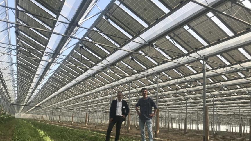 Agrovoltaico: sì, no, come?