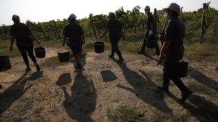 Allagamenti e roghi dolosi in Puglia