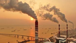 Cosa è l'etica ambientale?