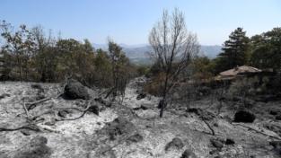 Allarme incendi in dieci Regioni