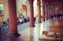 Verso il voto, Bologna alla ricerca del sindaco che dia un'anima ai servizi offerti